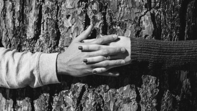 カップル 手をつなぐ 夫婦 指輪