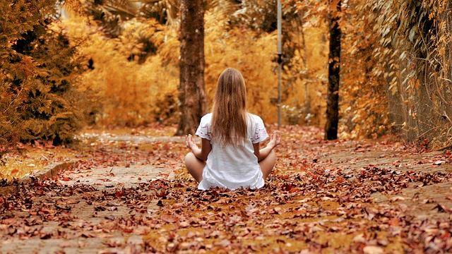 瞑想 ヨガ 精神統一 感謝 祈る 座禅 秋の森 木 自然