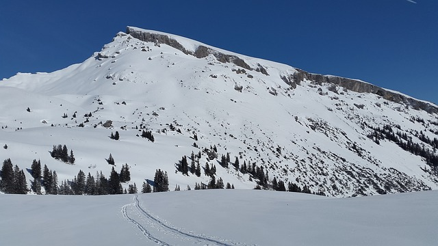 雪山 自然