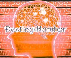 数秘術のディスティニーナンバーとは何か分かりやすく解説