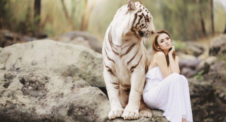 動物 虎 女性