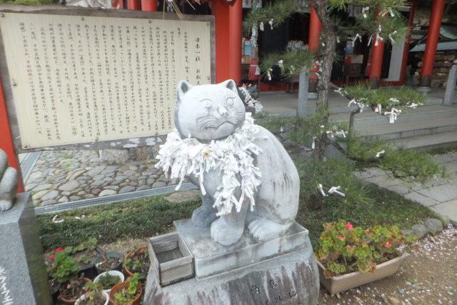 お松大権現の猫の狛犬